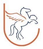 bildungsbuendnis_logo_150